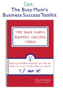 Biz Succes Toolkit Book Only